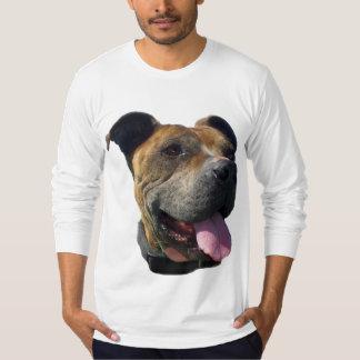 Camisa para hombre de Pitbull