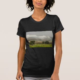Camiseta 1r Día de gran inundación de Colorado de la lluvia
