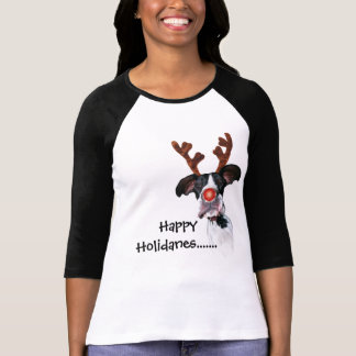 Camiseta Amigos Holidane de great dane