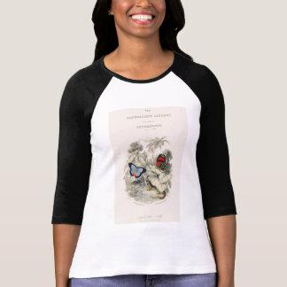 Camiseta Amo mariposas y polillas