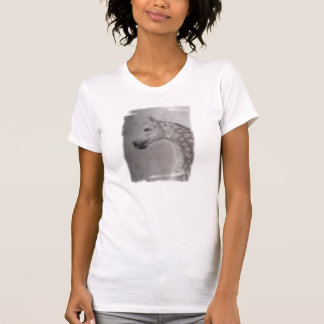 Camiseta árabe del caballo, Winterlight