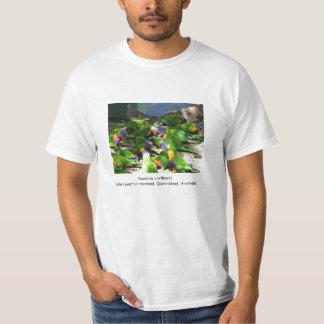Camiseta Arco iris Lorikeets