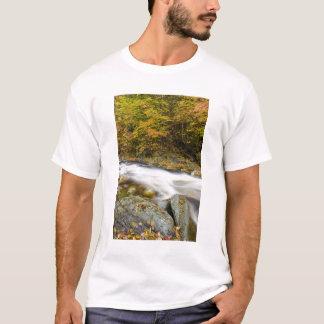 Camiseta Arroyo del rugido en caída en el verde de Vermont