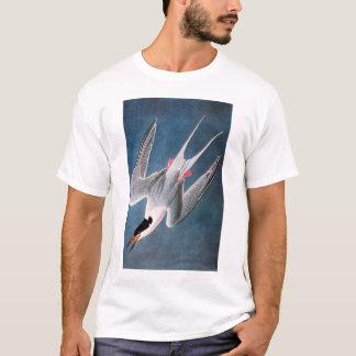 Camiseta Audubon: Golondrina de mar rosada