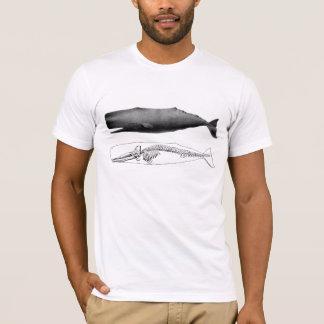 Camiseta Ballena de esperma