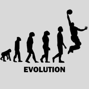 Evolucion Basket Baloncesto Baloncesto Regalos Originales Green Turtle Camiseta de Tirantes Hombre