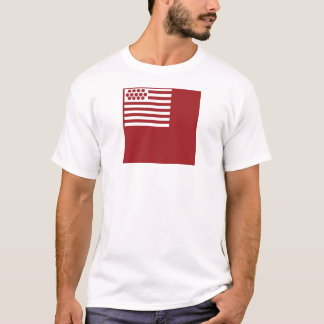 Camiseta Bandera de Brandywine