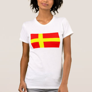 Camiseta Bandera étnica de discurso sueca Escandinavia de
