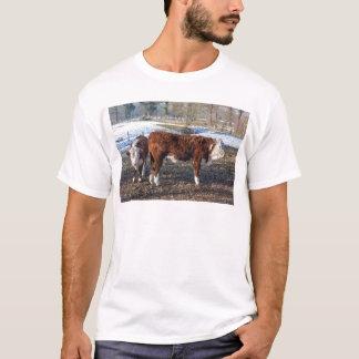 Camiseta Becerros de Hereford en prado del invierno con