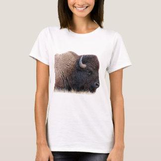 Camiseta Búfalo del bisonte americano
