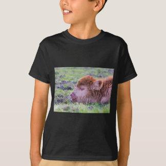 Camiseta Cabeza del becerro escocés recién nacido marrón