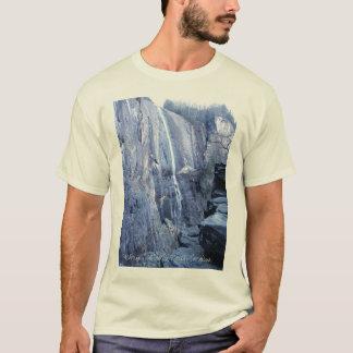 Camiseta Caídas de la nuez de nuez dura, Carolina del Norte