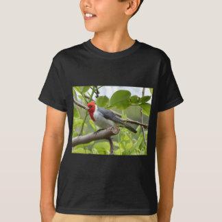Camiseta Cardenal de cresta roja