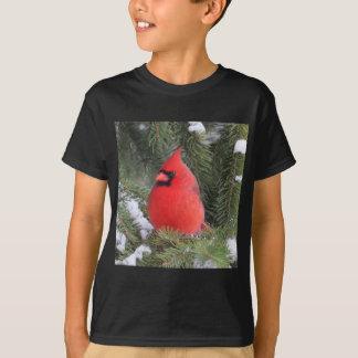 Camiseta Cardenal Spruce