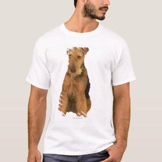 Camiseta Ciérrese para arriba de un terrier del airedale