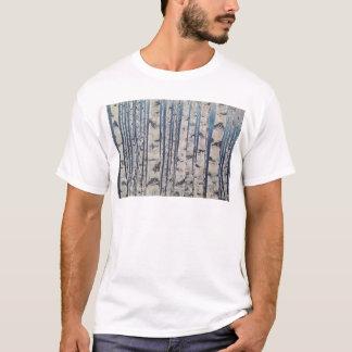Camiseta Código Morse de los árboles de abedul