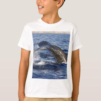 Camiseta Cola de la ballena
