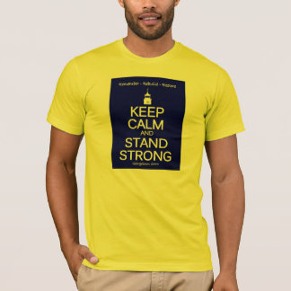Camiseta CommemorativeT-Camisa del fuego del SC de