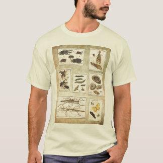 Camiseta con errores - ejemplos científicos