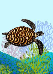 70ad621e4 Camiseta Con Estampado Integral Camisa en peligro del panel de la tortuga  de mar