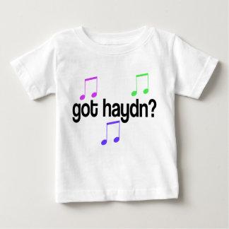Camiseta conseguida linda del bebé de Haydn