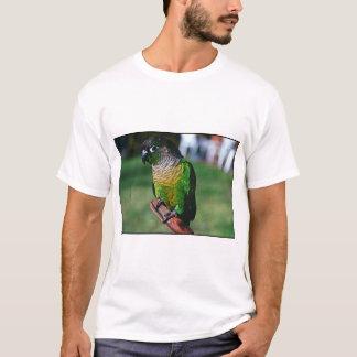 Camiseta conure verde del control