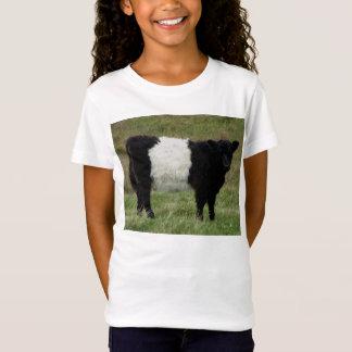 Camiseta Dartmoor ceñió la mirada del becerro de Galloway
