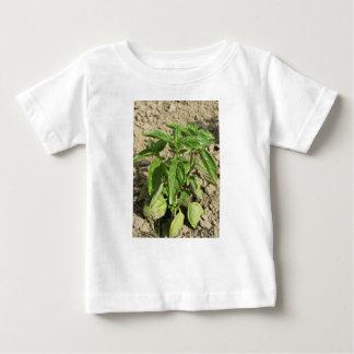 Camiseta De Bebé Escoja la planta fresca de la albahaca que crece