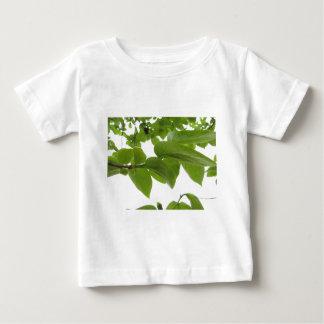 Camiseta De Bebé Hojas del verde del árbol de caqui en el fondo