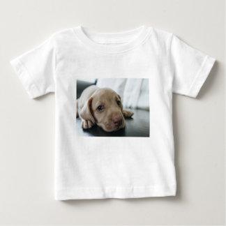 Camiseta De Bebé Mirada del mascota del ojo azul de los ojos azules