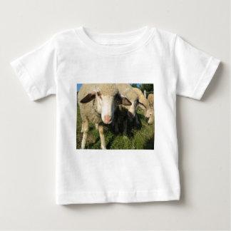 Camiseta De Bebé Ovejas curiosas