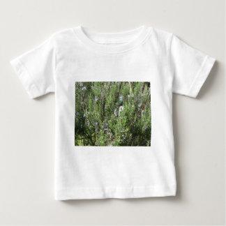 Camiseta De Bebé Planta de Rosemary con las flores. Toscana, Italia