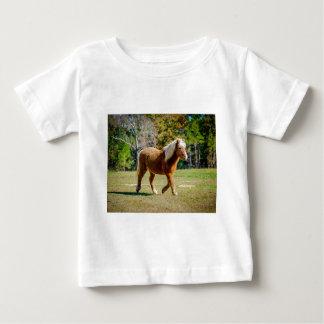 Camiseta De Bebé Potro de Shetland bonito