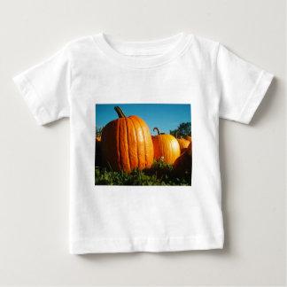 Camiseta De Bebé Pumpkins_Hancock_Shaker_village_2418