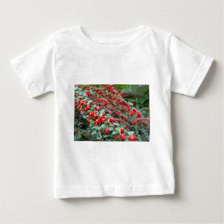 Camiseta De Bebé Ramas con las bayas rojas maduras del cotoneaster