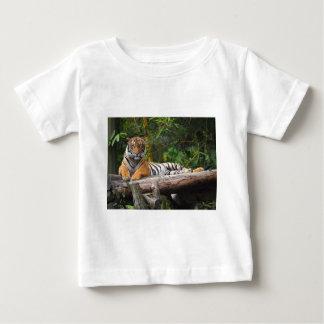 Camiseta De Bebé Tigre del Malay de los alquileres que gandulea en