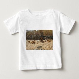 Camiseta De Bebé Vacas