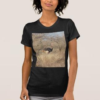 Camiseta de la avestruz, colección africana del