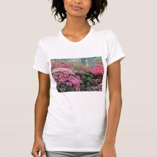 Camiseta de la azalea de las señoras