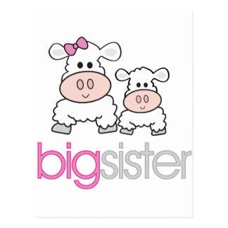 Camiseta de la invitación del embarazo de las ovej tarjeta postal