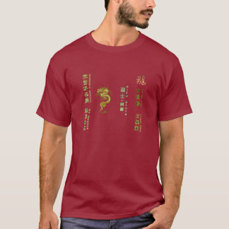 Camiseta de Sifu