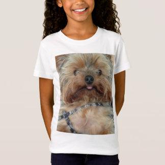 Camiseta de Yorkie