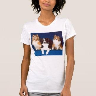 Camiseta del collie