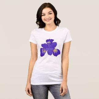 Camiseta del iris