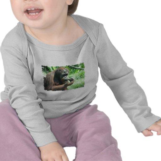 Camiseta del niño del mono del orangután