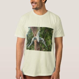 Camiseta del Pterodactyl