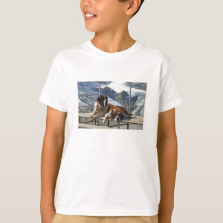 camiseta del st bernard