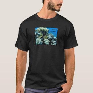 Camiseta Descubra ocultado