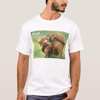 Camiseta divertida de la vaca de Aberdeen Angus