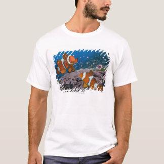 Camiseta Dos Clownfish